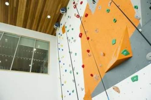 Climbing_Wall.jpg