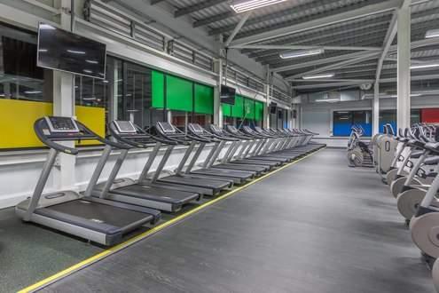 Better_Gym_East_Village-_Treadmills.JPG