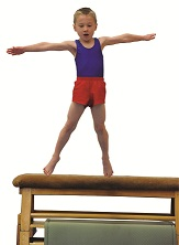 A Better variety of Gymnastics Lessons & Courses
